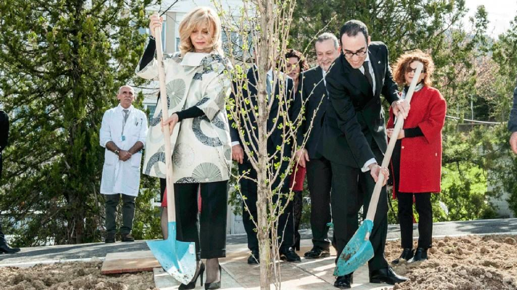 san marino  albero dedicato a Giorgio Perlasca